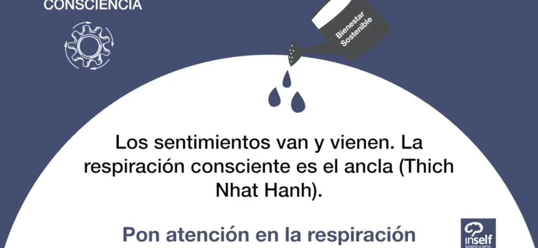post_consciencia